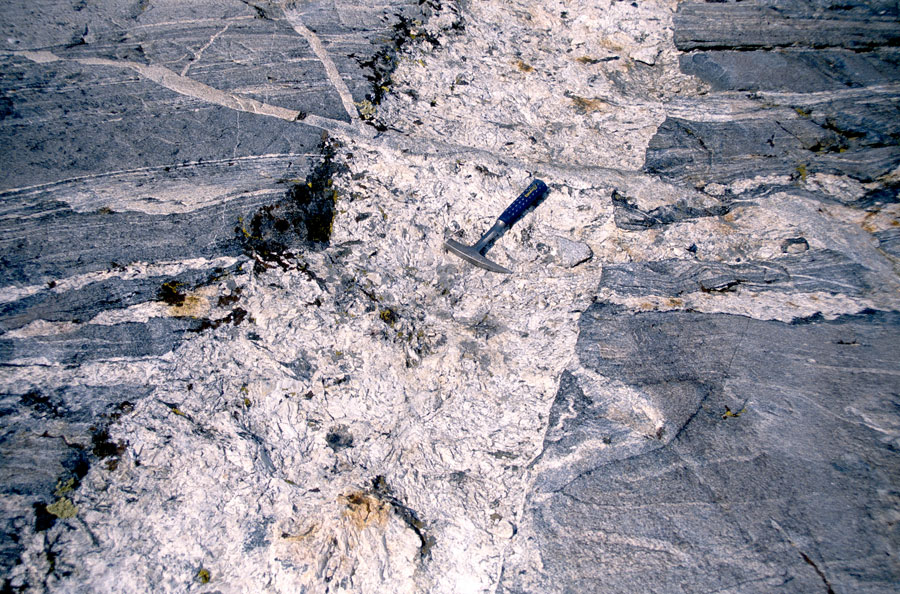 Cross-cutting pegmatite dikes and sils demonstrate many episodes of tectonic activity.